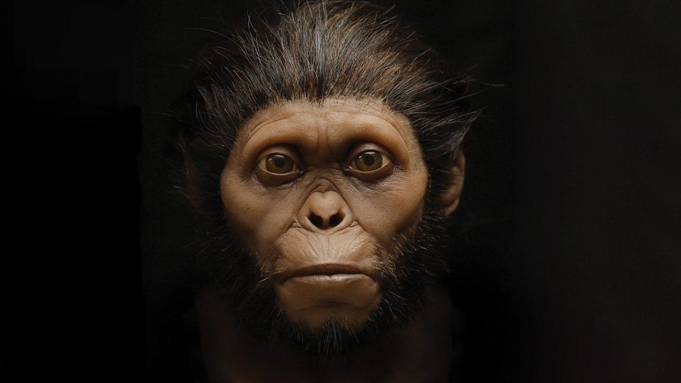 Нови генерирани изображения на древните Човекоподобни