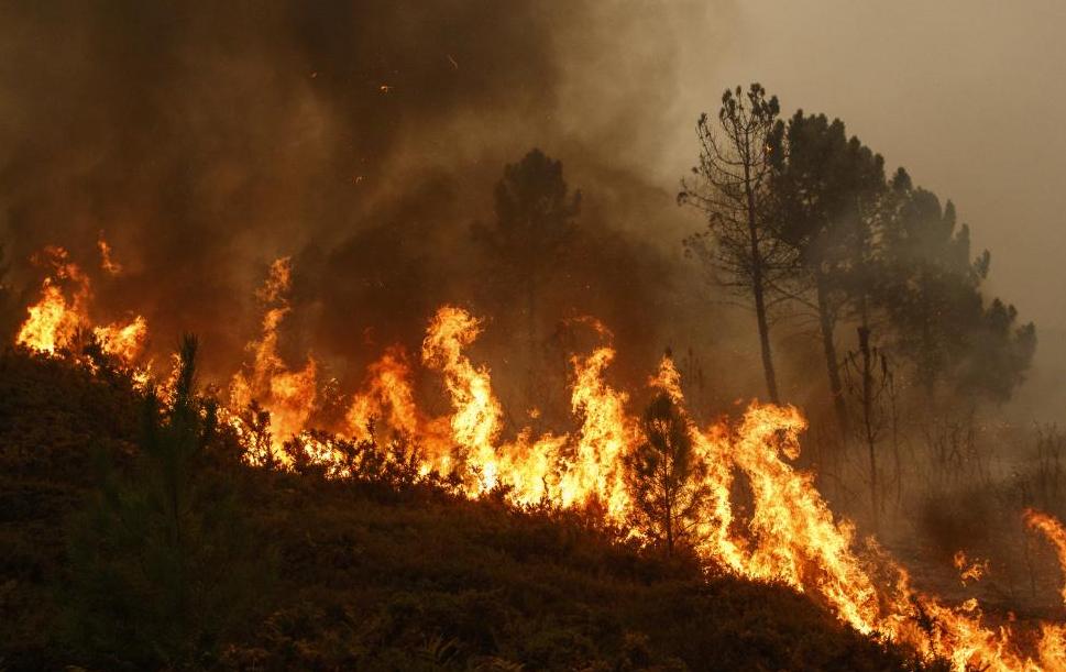 Турските служби се борят с горските пожари в Анталия