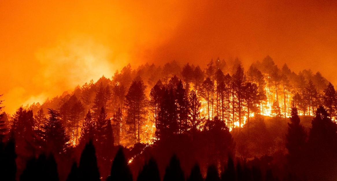 Пожари в средиземноморието – пожарите се гасят в Гърция, Турция и Италия